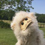Tiggy the Puppet Monkey